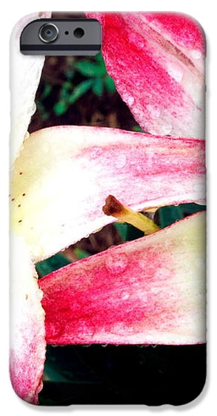 Dual Pinks II iPhone Case by Amanda Kiplinger