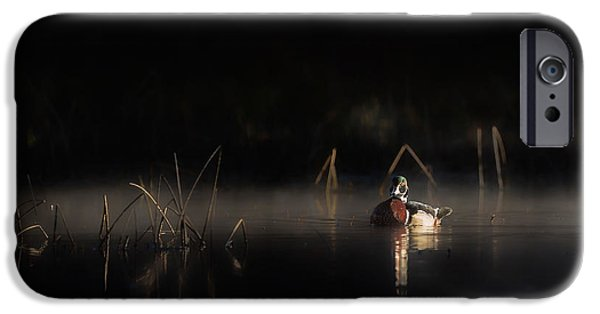 Eerie iPhone Cases - Duck of the Morning Mist iPhone Case by Bill Wakeley