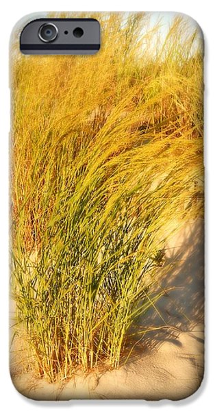 Dune Grass II  - Jersey Shore iPhone Case by Angie Tirado