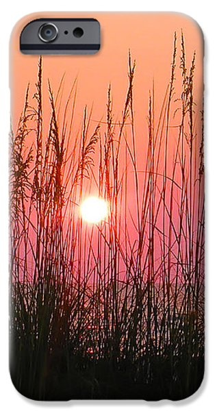 Dune Grass Sunset iPhone Case by Bill Cannon