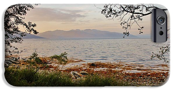 Norway iPhone Cases - Dusk Fjordland Forest iPhone Case by David Broome