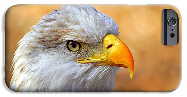 Eagle iPhone Cases - Eagle 7 iPhone Case by Marty Koch