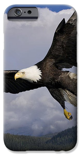 Eagle Flying in Sunlight iPhone Case by John Hyde - Printscapes