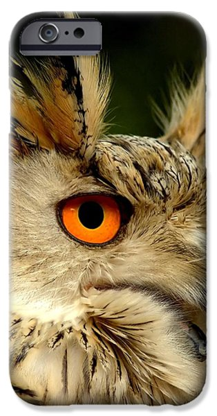 Eagle Owl iPhone Case by Photodream Art