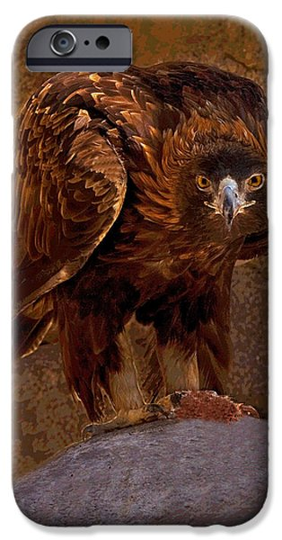 Predator Pyrography iPhone Cases - Eagles Stare iPhone Case by Rick Strobaugh