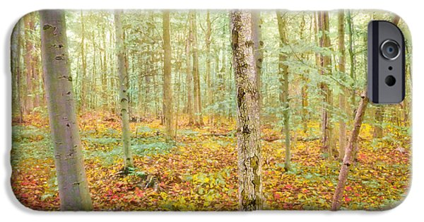 Rural iPhone Cases - Early Autumn Forest iPhone Case by Hal Halli