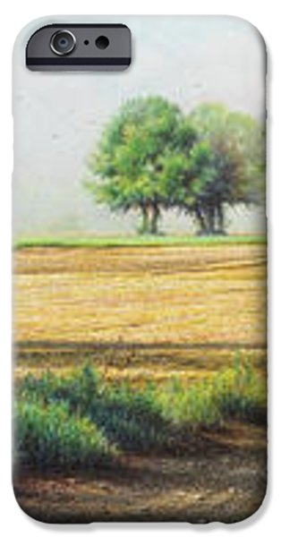 Mist Drawings iPhone Cases - Early Birds iPhone Case by Lynn Bywaters