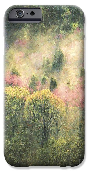 Fog Mist iPhone Cases - Early Spring Morning iPhone Case by Steve Bailey