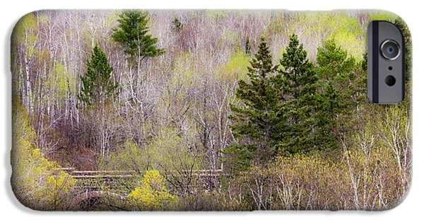 Minnesota iPhone Cases - Early Spring Palette iPhone Case by Mary Amerman