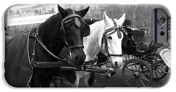 Horse And Buggy iPhone Cases - Ebony and Ivory in Salzburg iPhone Case by John Rizzuto