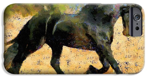 Abstract Expressionism iPhone Cases - Ebony The Horse - Abstract Expressionism iPhone Case by Georgiana Romanovna
