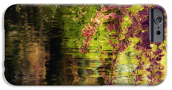 Cherry Blossoms Photographs iPhone Cases - Echoes of Monet - Cherry Blossoms Over a Pond - Brooklyn Botanic Garden iPhone Case by Vivienne Gucwa
