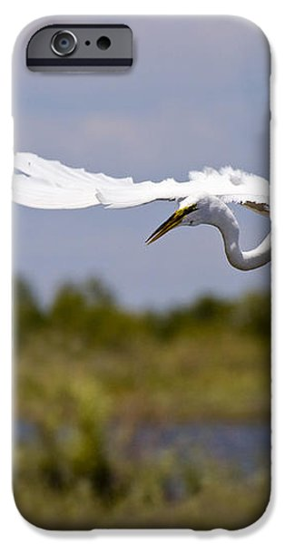 Egret Ballet iPhone Case by Mike  Dawson