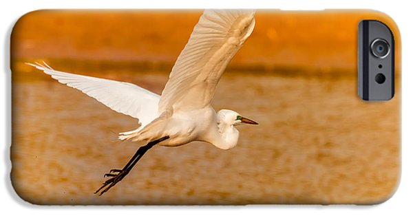 Sea Watch iPhone Cases - Egret - Going Home iPhone Case by Robert Frederick