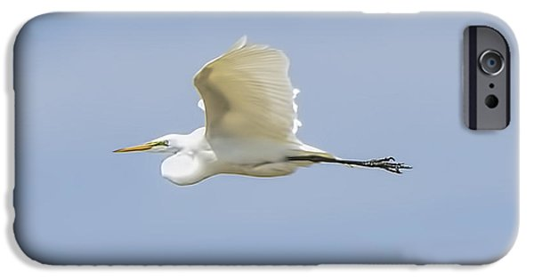 Snowy Day iPhone Cases - Egret in Flight II iPhone Case by LeeAnn McLaneGoetz McLaneGoetzStudioLLCcom