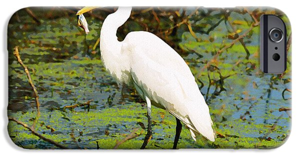 Wild Animals iPhone Cases - Egret With Fish  iPhone Case by Manjot Singh Sachdeva