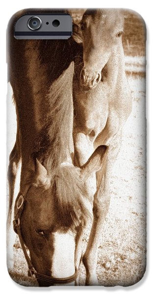 Bonding iPhone Cases - Elegance and Innocence iPhone Case by Barbara Dudley