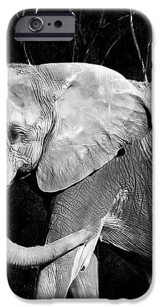 elephant iPhone Case by Camille Lopez