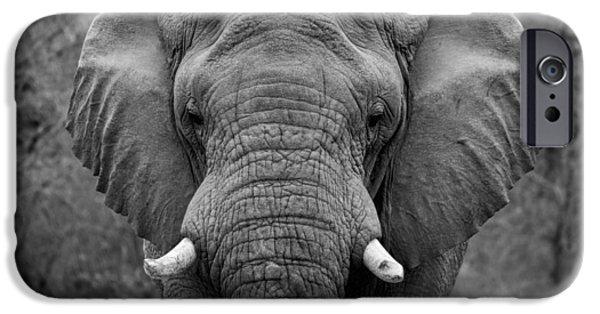 Elephants iPhone Cases - Elephant Eyes - Black and White iPhone Case by Stephen Stookey