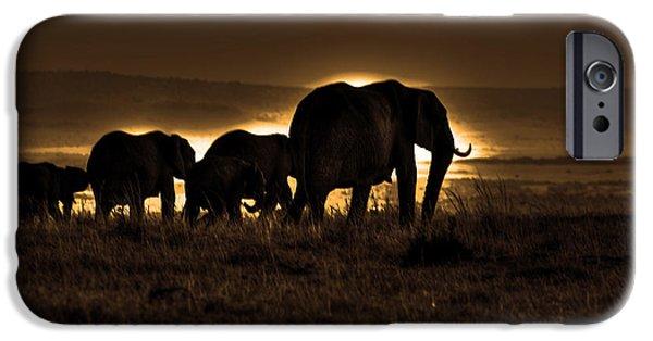 Elephant iPhone Cases - Elephant Herd On The Masai Mara iPhone Case by Aidan Moran