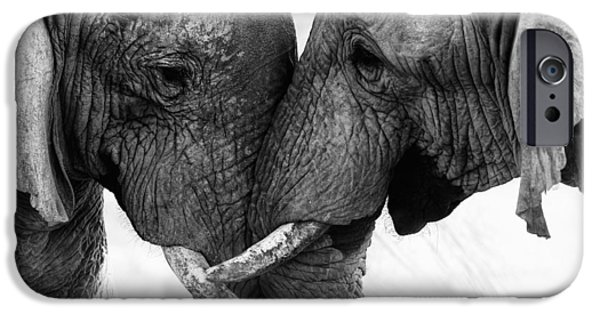 Recently Sold -  - Power iPhone Cases - Elephant Touch iPhone Case by Seyms Brugger