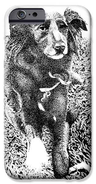 Dogs iPhone Cases - Alaya iPhone Case by John Houseman