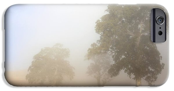 Mist iPhone Cases - Emerging from the Fog iPhone Case by Mike  Dawson