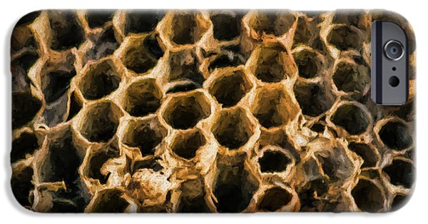 Hornets Nest iPhone Cases - Empty Nest iPhone Case by Black Brook Photography