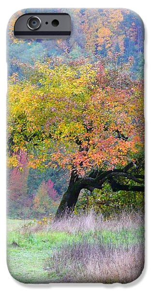 Enchanted Park iPhone Case by Lori Seaman