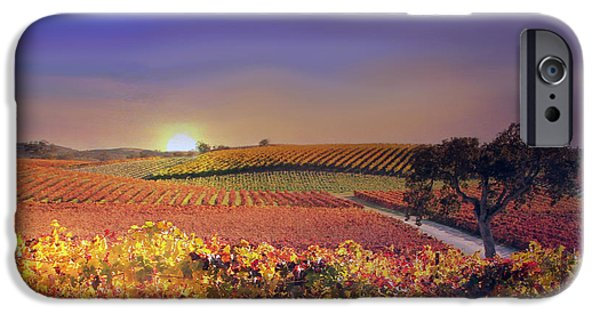 Vineyard Art iPhone Cases - Enchanted Vineyard iPhone Case by Stephanie Laird