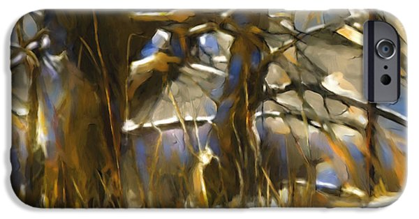 Winter Scene iPhone Cases - End Of A Winters Day iPhone Case by Bob Salo