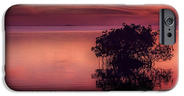 Mangrove iPhone Cases - End Of Another Day iPhone Case by Marvin Spates