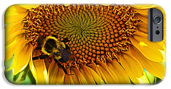 Crops iPhone Cases - End of Summer iPhone Case by Kathy Kelly