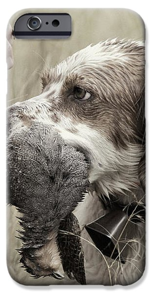 English Setter and Hungarian Partridge - D003092a iPhone Case by Daniel Dempster