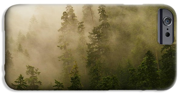 Fog Mist iPhone Cases - Eog running through the trees iPhone Case by Jeff  Swan