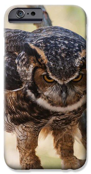 Birds iPhone Cases - Eurasian Eagle Owl iPhone Case by Chris Flees