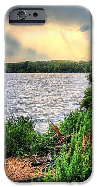 Evening Flight iPhone Case by JC Findley