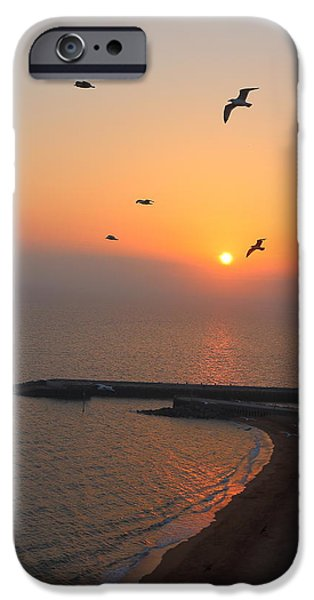 Beach Landscape iPhone Cases - Evening Flight iPhone Case by Rumyana Whitcher