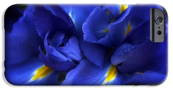 Recently Sold -  - Summer iPhone Cases - Evening Iris iPhone Case by Jessica Jenney