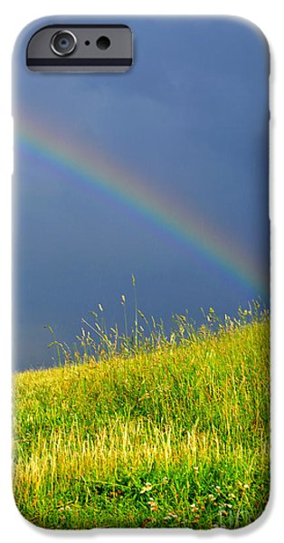 Summer Storm iPhone Cases - Evening Rainbow over Pasture Field iPhone Case by Thomas R Fletcher