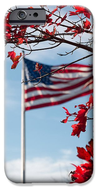Flag Pyrography iPhone Cases - Ever vigilant iPhone Case by Michel Baute