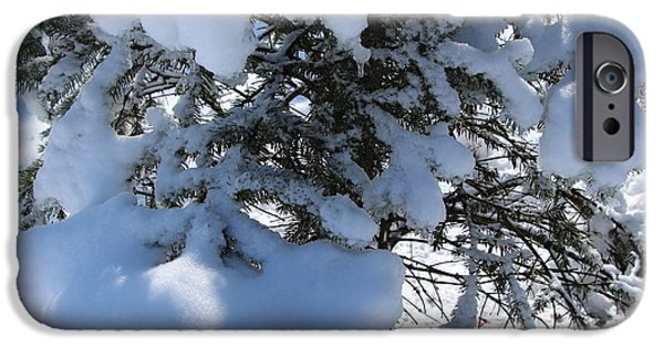 Wintertime iPhone Cases - Evergreen Wintertime iPhone Case by Jari Hawk