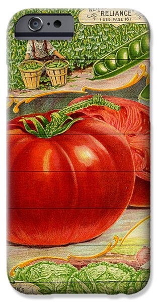 Agricultural Drawings iPhone Cases - Everything for the garden - 1902 iPhone Case by Evgeni Nedelchev