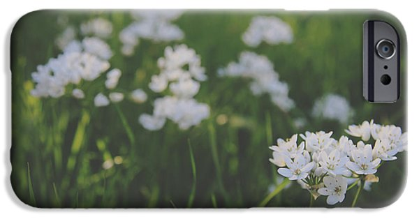 Macro Flower iPhone Cases - Everything is New Again iPhone Case by Laurie Search