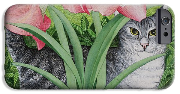 Beautiful Cat Drawings iPhone Cases - Exploring Possibilities iPhone Case by Pat Scott