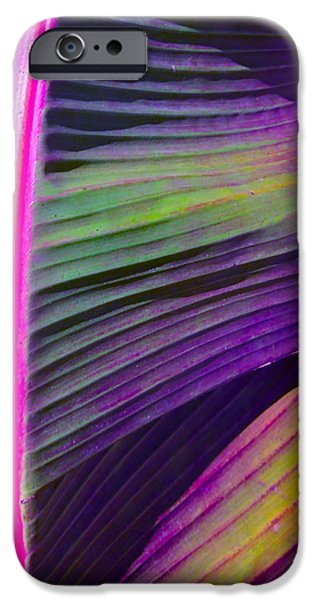 Garden iPhone Cases - Exposed iPhone Case by Gwyn Newcombe