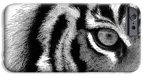 The Tiger Drawings iPhone Cases - Eye of the Tiger iPhone Case by Scott Woyak
