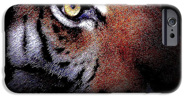 The Tiger iPhone Cases - Eye of the Tiger iPhone Case by Wingsdomain Art and Photography