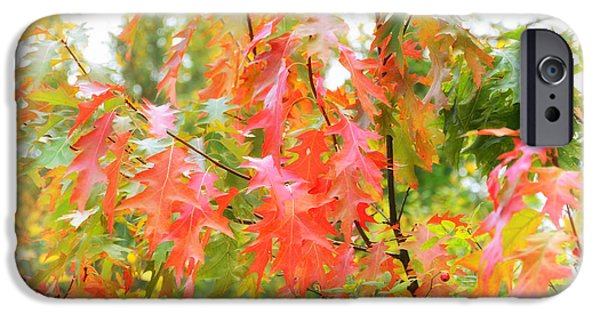Nature Abstract iPhone Cases - Fa iPhone Case by SK Pfphotography