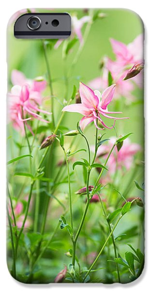 Columbine iPhone Cases - Fairyland iPhone Case by Rebecca Cozart